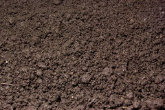 Fresh soil. As a background Stock Image