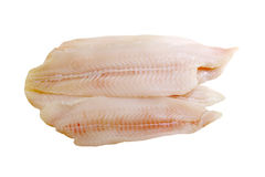 Fresh Sole Fillet Stock Images
