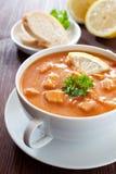 Fresh solyanka stew Royalty Free Stock Images