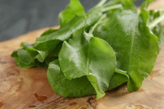 Fresh sorrel leaves on cutting board on oak wood. Table, rustic food stock photography