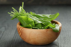 Fresh sorrel leaves in olive bowl on oak wood. Table, rustic food Stock Images