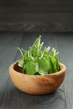 Fresh sorrel leaves in olive bowl on oak wood. Table, rustic food Royalty Free Stock Photos