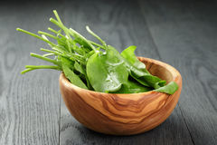 Fresh sorrel leaves in olive bowl on oak wood. Table, rustic food Stock Photo