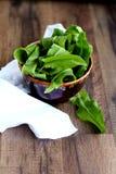 Fresh sorrel. Salad in steel bowl Royalty Free Stock Images