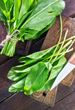 Fresh sorrel. On the wooden board and on a table Royalty Free Stock Photography