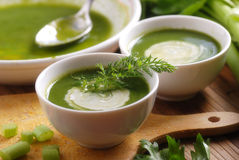 Fresh soup of celery Royalty Free Stock Photo