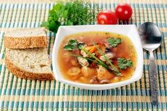 Fresh soup Royalty Free Stock Photos