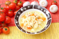 Fresh soup with chicken and noodles Royalty Free Stock Image