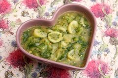 Soup of cucumber. A fresh soup of cucumber with herbs stock image