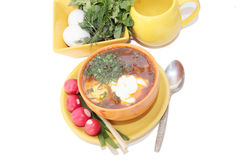 Fresh soup with egg and tomatoes. Fresh tasty soup in bright ceramic ware Stock Image