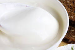 Fresh sour cream Royalty Free Stock Photography