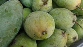 Fresh sour raw mango Thailand summer fruit. Fresh mango from fruit garden Stock Images