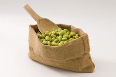 Fresh soy beans Stock Image