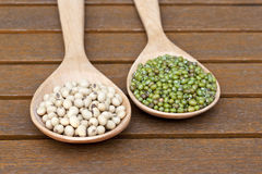 Fresh Soy and green bean. Soy bean and green bean on wood spoon Stock Images
