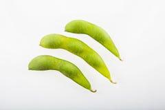 Fresh soya beans Stock Image