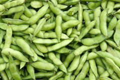 Fresh soybean pods. The background of fresh soybean pods Royalty Free Stock Image