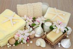 Fresh Spa Beauty Treatment Stock Photos