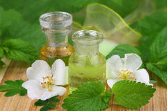 Fresh spa scene with bath oils Stock Photo