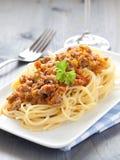 Fresh spaghetti bolognese Stock Image