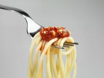 Fresh Spaghetti Pasta Stock Image