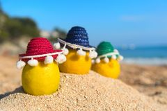 Spanish lemons at the beach. Fresh Spanish lemons with Sombrero at the beach Royalty Free Stock Image