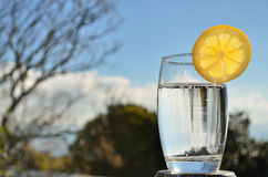 Fresh sparkling water. A glass of fresh sparkling water with a lemon slice Stock Photography