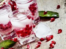 Fresh sparkling water with ice and pomegranate, selective focus royalty free stock images