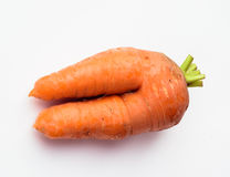 Fresh special carrots on a white background. Fruits, isolated on white background for design Stock Photography