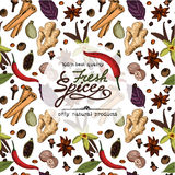 Fresh spice banner. vector illustration