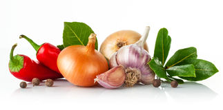 Fresh spice with garlic bay leaf Royalty Free Stock Image