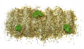 Fresh spices basil, dill, parsley posted Royalty Free Stock Image