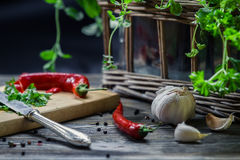Fresh spices harvested from home-grown Royalty Free Stock Photo