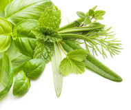 Fresh spices and herbs isolated Stock Images