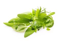 Fresh spices and herbs isolated Royalty Free Stock Photos