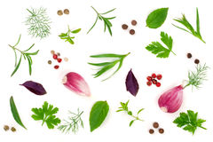 Fresh spices and herbs isolated on white background. Dill parsle. Y basil thyme tartun peppercorns garlic. Top view Royalty Free Stock Image