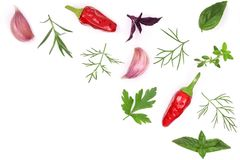 Fresh spices and herbs isolated on white background. Dill parsley basil thyme chili peppercorns garlic. Top view.  Royalty Free Stock Photo