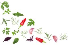 Fresh spices and herbs isolated on white background. Dill parsley basil thyme chili peppercorns garlic. Top view Stock Photos