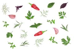 Fresh spices and herbs isolated on white background. Dill parsley basil thyme chili peppercorns garlic. Top view Royalty Free Stock Photo