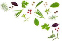 Fresh spices and herbs isolated on white background. Dill parsley basil thyme tartun peppercorns. Top view Stock Photography