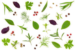 Fresh spices and herbs isolated on white background. Dill parsley basil thyme tartun peppercorns. Top view Stock Image