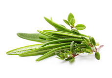 Fresh spices and herbs isolated royalty free stock photo