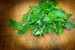 Fresh spices and herbs Royalty Free Stock Image