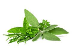 Fresh spices and herbs. On white background stock photo