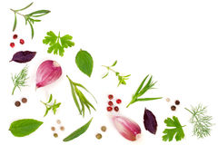 Fresh spices and herbs  on white background. Dill parsley basil thyme tartun peppercorns garlic. Top view Royalty Free Stock Image
