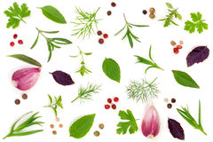 Fresh spices and herbs  on white background. Dill parsley basil thyme tartun peppercorns garlic. Top view Stock Photos