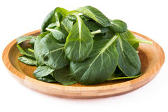Fresh spinach. Leaves in wooden plate Stock Photos