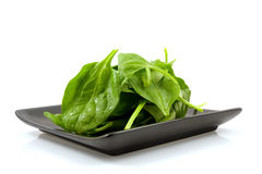 Fresh spinach on black plate Royalty Free Stock Images
