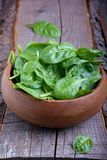 Fresh spinach Royalty Free Stock Images
