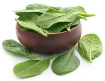 Fresh Spinach. In a bowl over white background Royalty Free Stock Images