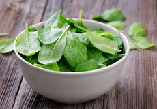 Fresh spinach in bowl Stock Image